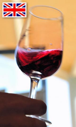 wine-university-english-training-universite-du-vin
